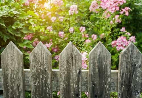 garden fencing ideas