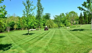 Lawn care services Wake Forest NC