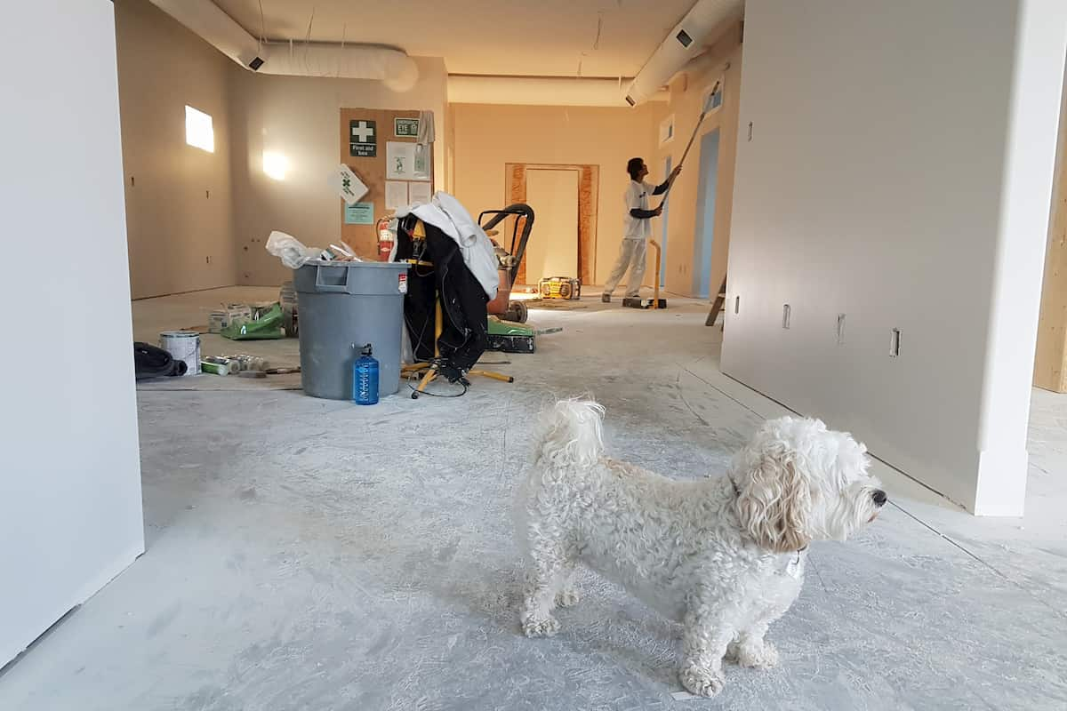 Preparing Your Home for Renovations