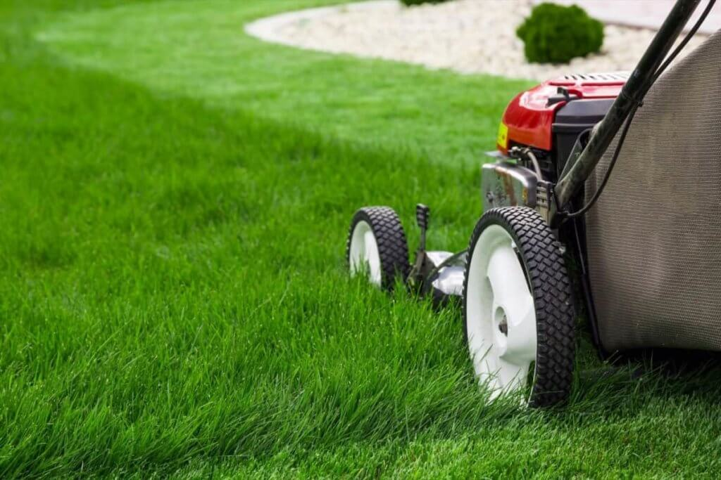 Advantages of having your own landscaping business