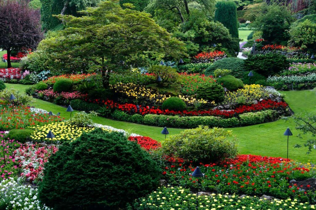 Take Landscaping Tips to Heart