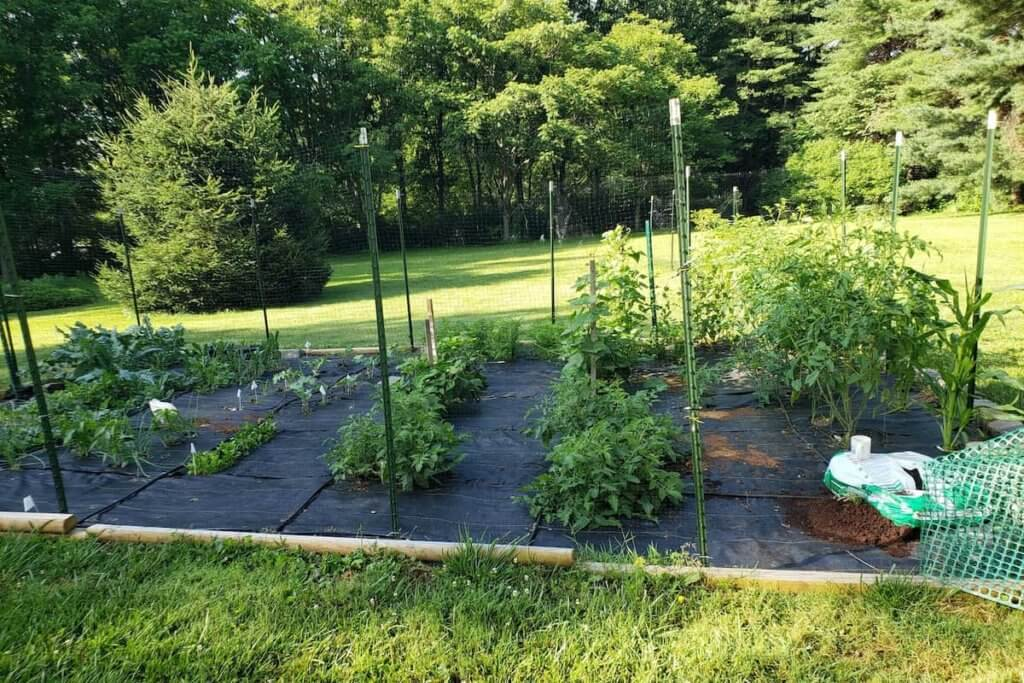 Best practices for using landscaping fabric